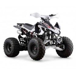 QUAD 125 3 MARCE CON RETRO
